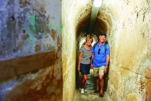 Rottnest Island Full-Day Trip With Guided Island Tour From Perth - Accommodation Great Ocean Road